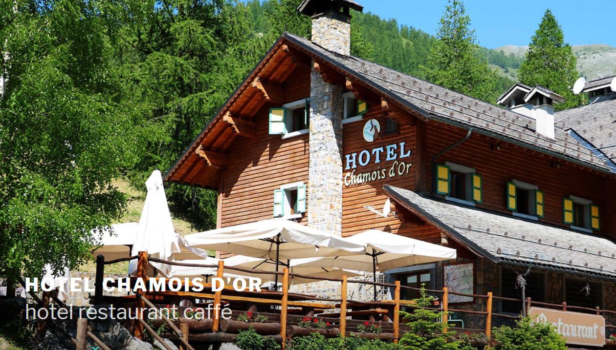 Hotel - Restaurant Chamois d'Or - France